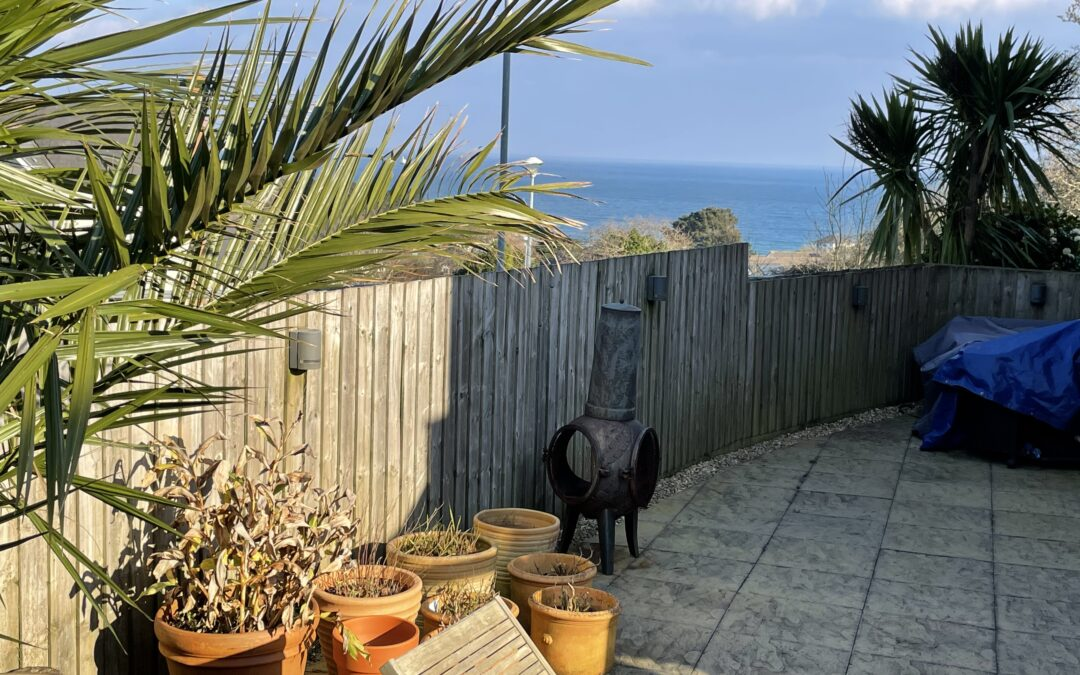 Postcards from Cornwall – Spring is in the air!